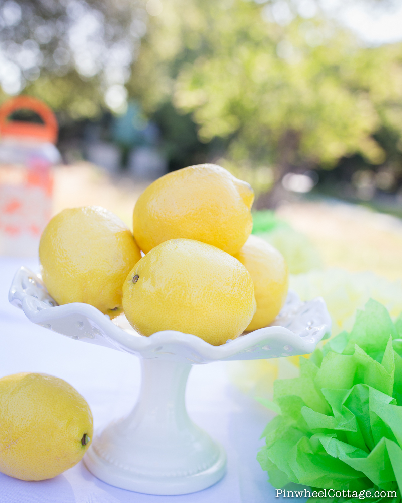 DIY Kids Lemonade Stand-3