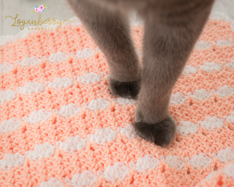 cats and blankets, cat on a blanket, peaches and cream crochet baby blanket, baby blanket crochet pattern, crochet baby blanket tutorial, free crochet pattern, how to crochet a baby blanket, crochet blanket with scallop trim, scallop edge crochet blanket, peach blanket, pink and white blanket