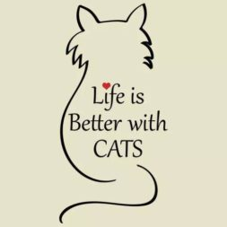 life is better with cats, life is better with a cat, cat quotes, cat lady quotes, cat lovers, quotes about cats, cat people