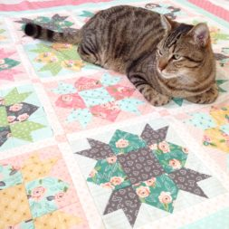 cats on quilts, cats and quilting, tabby cat on quilt, cats and sewing, kitty quilter