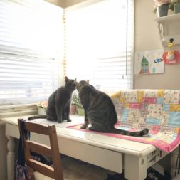 kitty cat love, cats and quilts, happy caturday, cats on quilts
