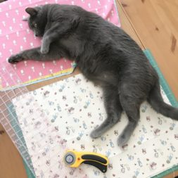 cats on quilts, cats and fabric, cats and quilting, sewing, korat cat