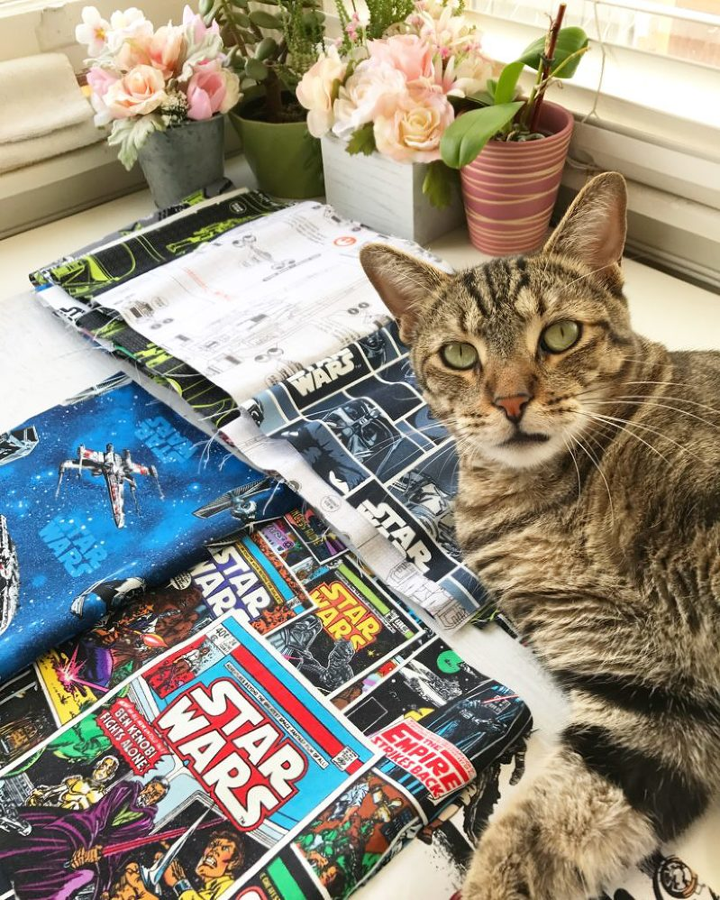 Cat + Star Wars + Fabric