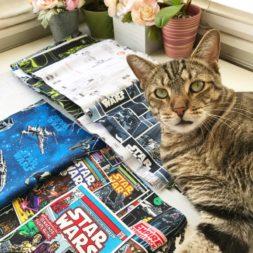 Cat + Star Wars + Fabric