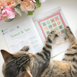 Cat and magazine, cat on quilts, quilting magazine, fons and porter, love of quilting, lovely morning with cat, sweet and tart quilt, sugar pie quilt