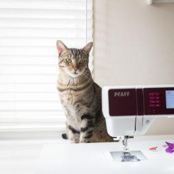 Cat + Sewing Machine, Pfaff Sewing