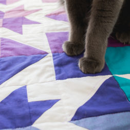 Kitty Peets, Cat Paws, Cats and Quilting, Cat Feet, Cats on Quilts, Aurora Borealis Quilt